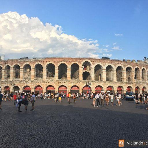 arena-site.jpg