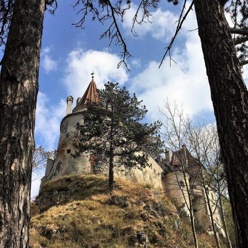 romenia-transilvania-castelo-arvores-min.jpg